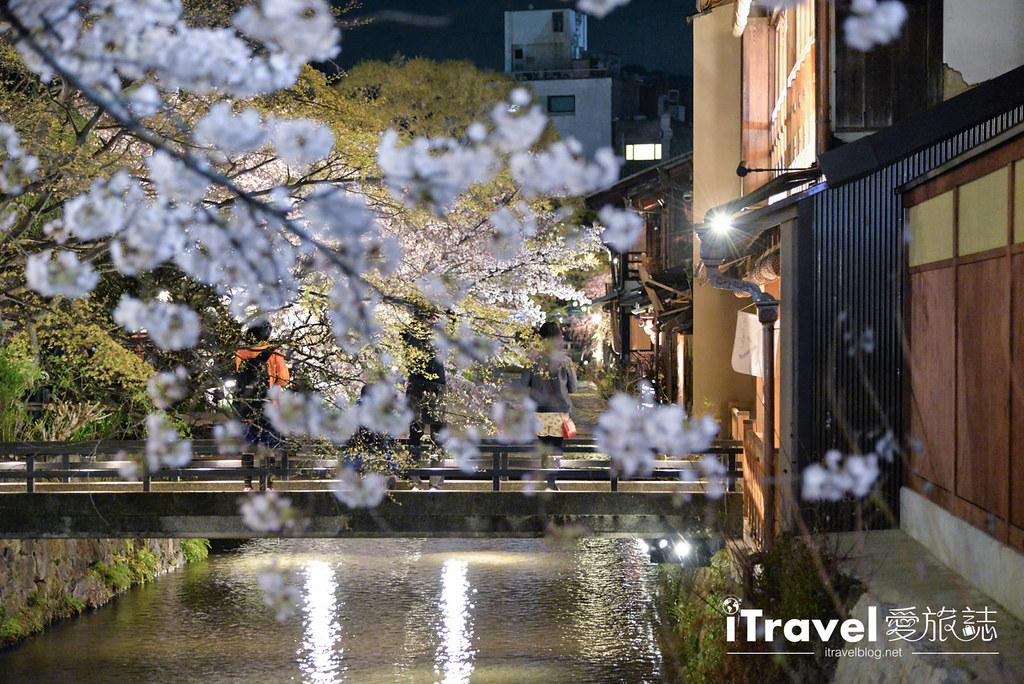 京都赏樱景点 祇园白川 (19)