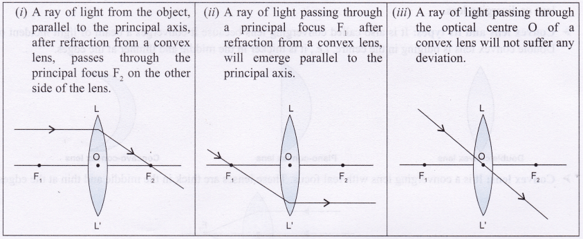 NCERT Class 10 Science Lab Manual Image Formation by a Convex Lens