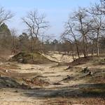 20180218 Pieterpad Venray - Vierlingsbeek 01