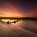 Sunrise - Shoreham, Sussex