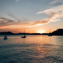 #sunset #sundayevening @sydney @visitnsw @australia #ilovesydney #sydney #summer #newsouthwales #wanderlust #travel #australia #seeaustralia #sydneyfolk #australiagram #sydneytravel #travel #guardiantravelsnaps #guardiancities #lonelyplanet #sydneylife #v