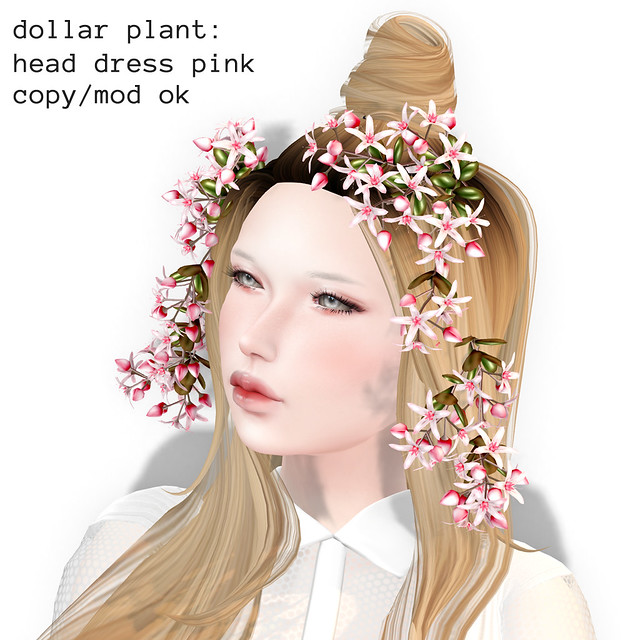 *NAMINOKE*Dollar Plant HeadDress Pink