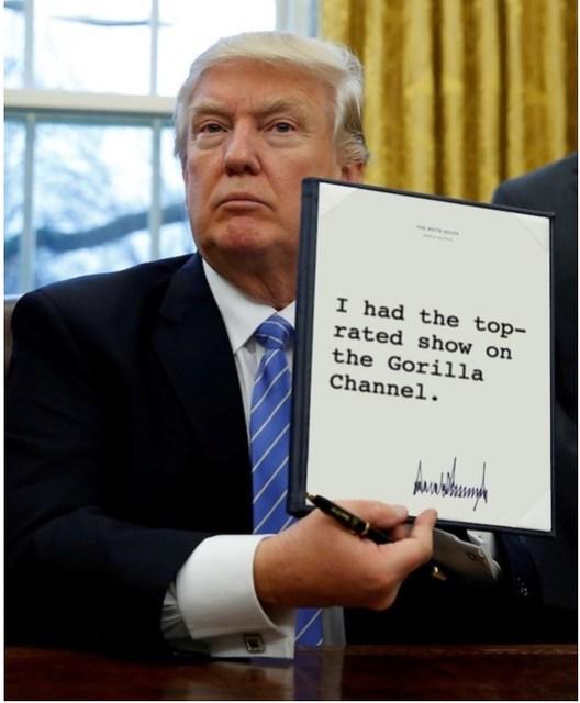 Trump_gorillachannel
