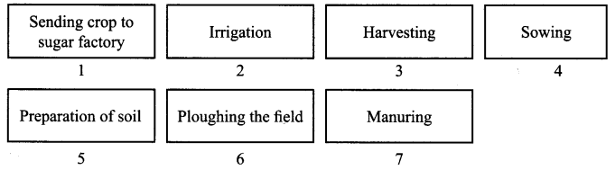 ncert-solutions-for-class-8-science-crop-production-and-management-1