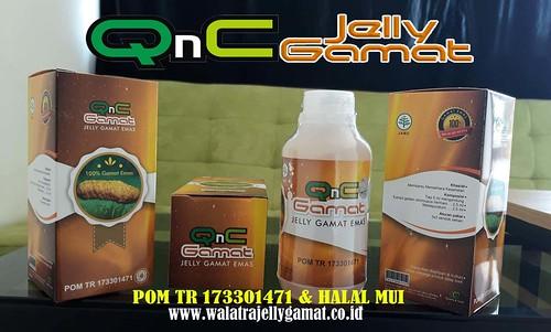 QnC Jelly Gamat Di Jual Dengan Harga Rp 155.000,- perbotol