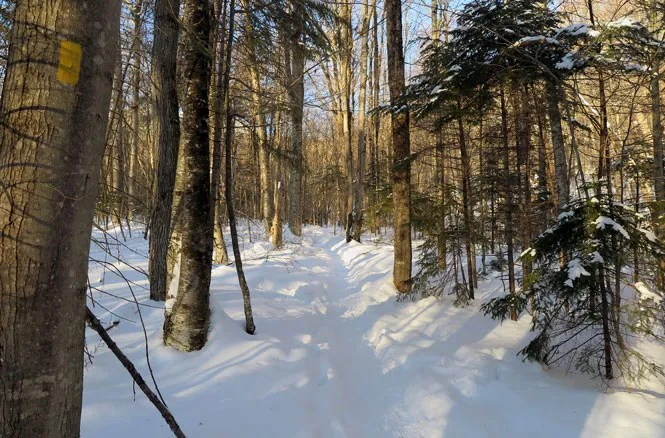 Mt. Tecumseh Winter Hike Start