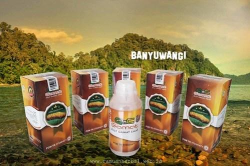 Agen Resmi QnC Jelly Gamat Banyuwangi