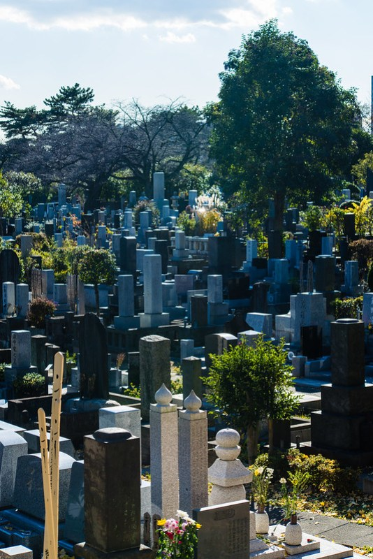 Cemetery / 靈園