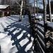 fenced snowy shadows