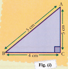 NCERT Class 10 Maths Lab Manual - Pythagoras Theorem - CBSE Tuts