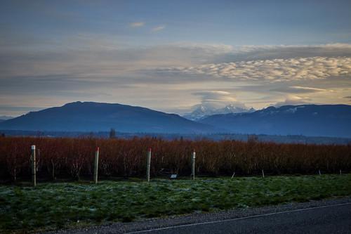 Lenticular Clouds over Mount Baker