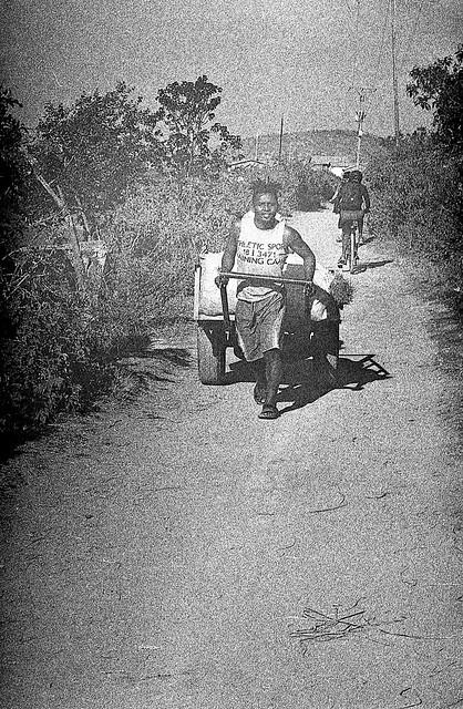 Cart Puller