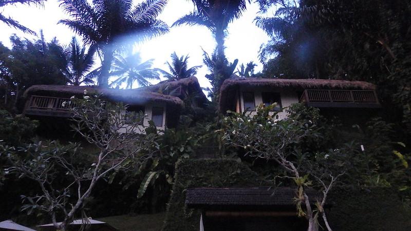 Nandini Jungle Spa Resort Review