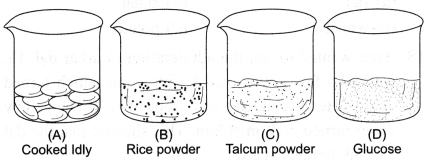 ncert-class-9-science-lab-manual-food-sample-test-for-starch-and-adulteration-6