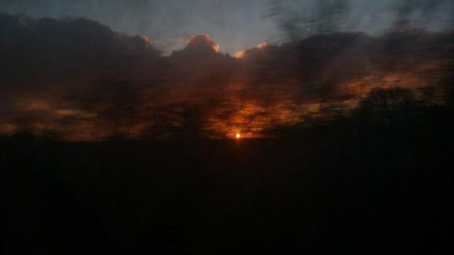 Soleil levant derrière les arbres