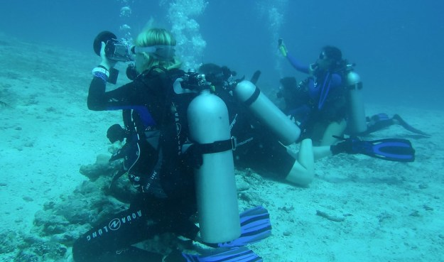 Divers at Manta Sandy