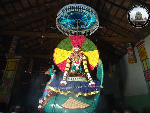 4ம் நாள் உற்சவம்-காலை-2017