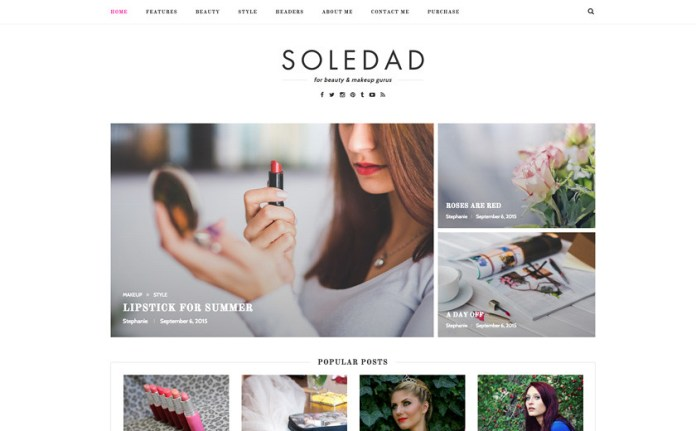 themeforest-soledad-4