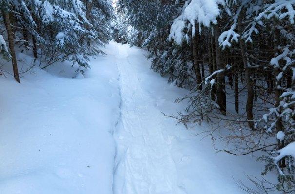 Mt. Tecumseh Winter Hike Climb