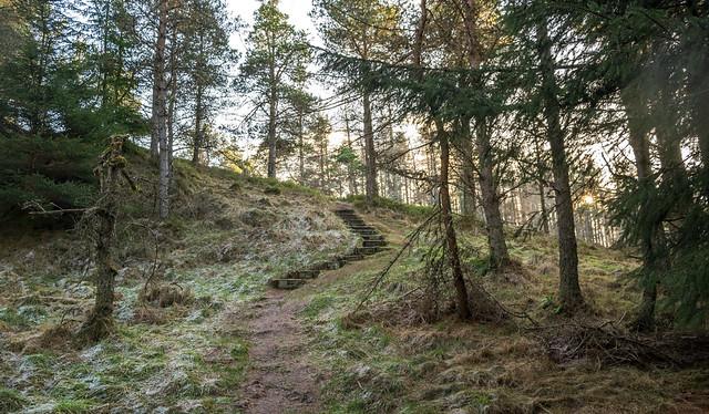 Còsagach at Craigower, Pitlochry