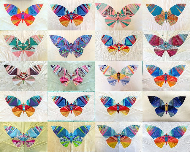 Take Wing Butterfly Class Feb18