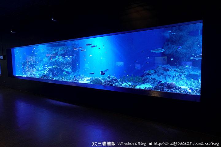 品川水族館 aqua park