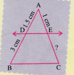 ncert-class-10-maths-lab-manual-basic-proportionality-theorem-triangle-14