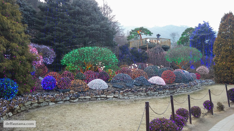 Garden of The Morning Calm - J's Cottage Garden 1