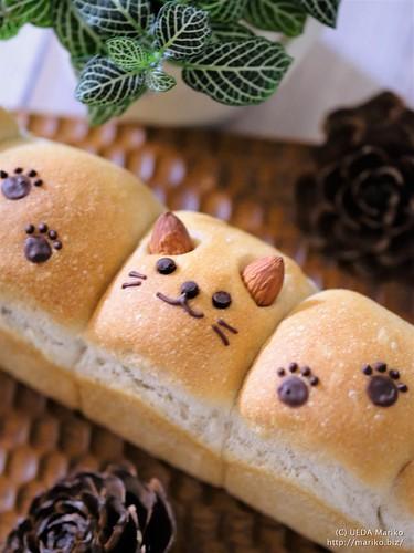 にゃんこパン 20180205-DSCT2436 (2)