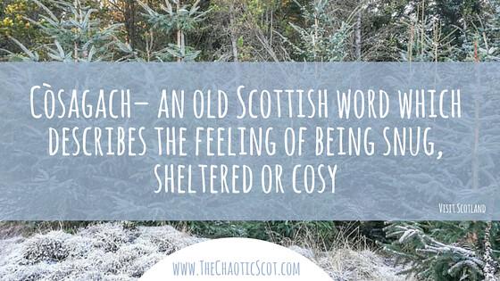 Còsagach in Wintry Pitlochry