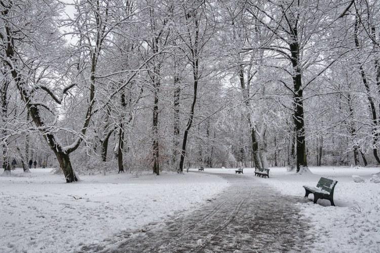 English Garden in Munich, Bavaria