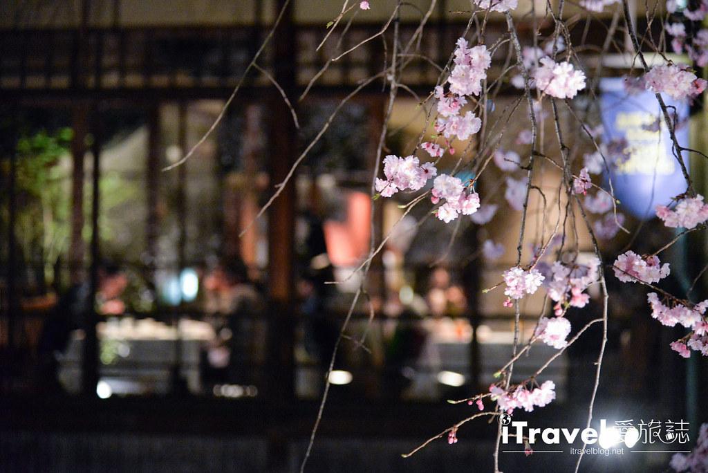 京都赏樱景点 祇园白川 (27)