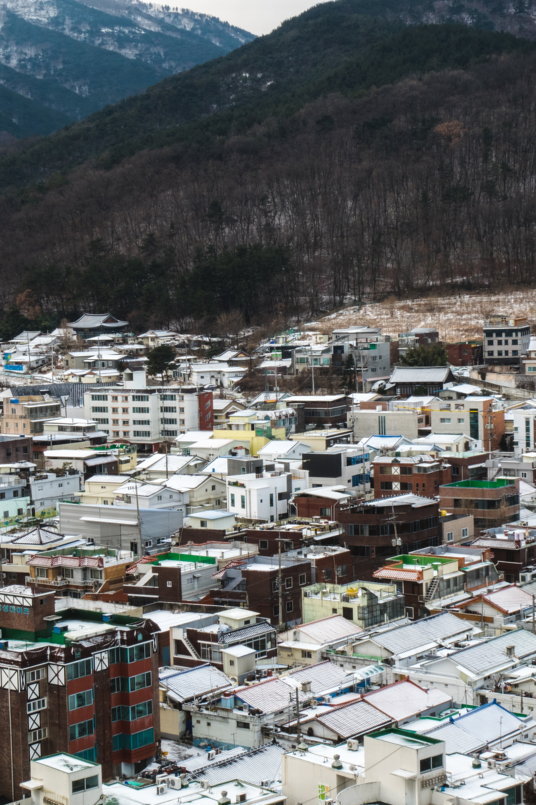 daegu // january 2018