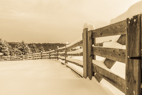 Fence With Fresh Snow