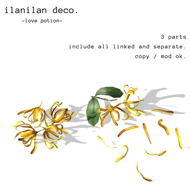 *NAMINOKE*IlanIlan Deco
