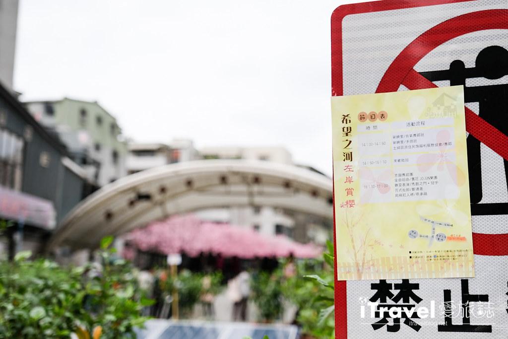 土城赏樱景点 希望之河左岸樱花 (5)