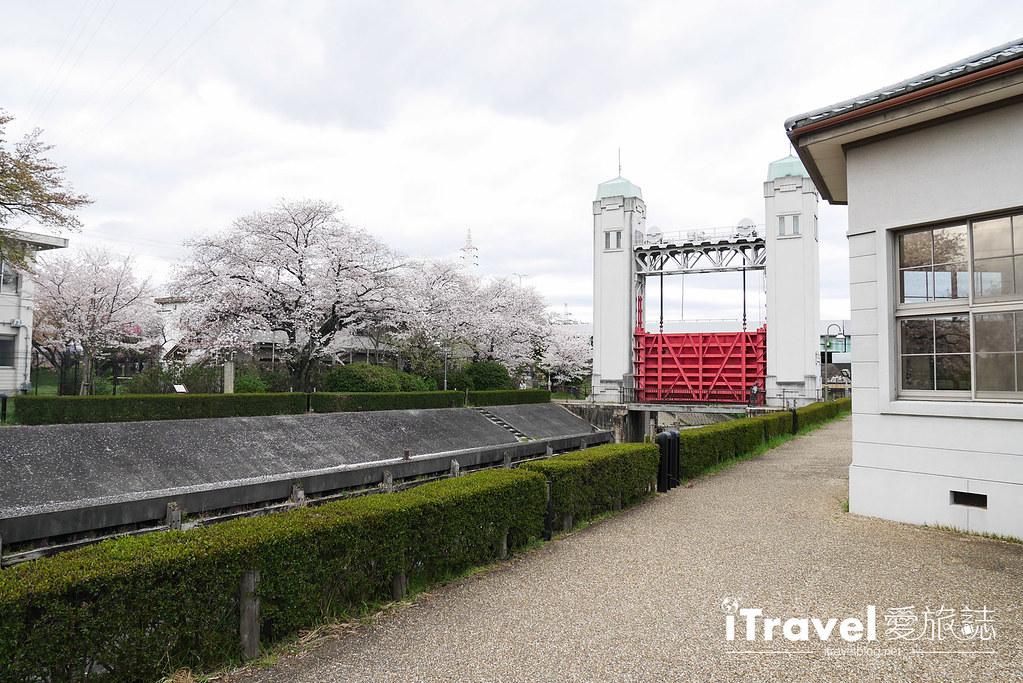 京都赏樱景点 伏见十石舟 (28)