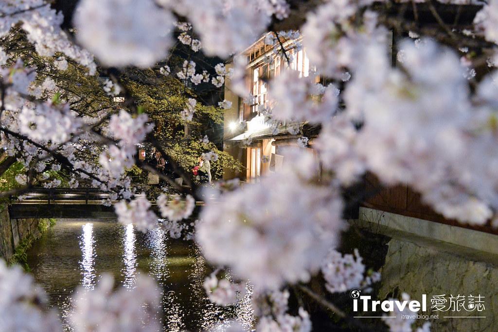 京都赏樱景点 祇园白川 (21)