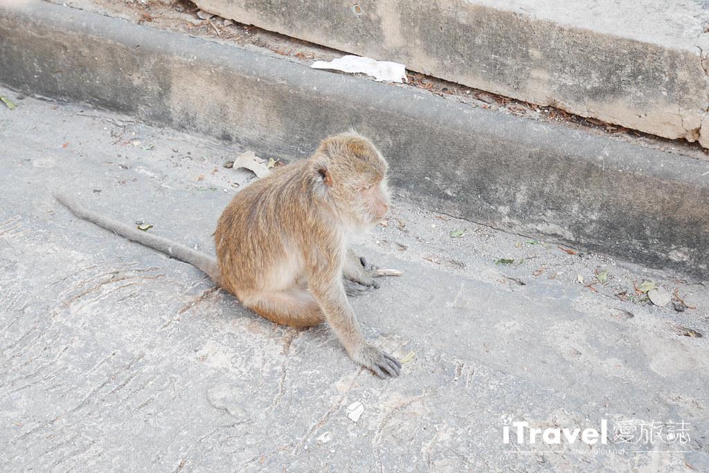 华欣景点推荐 考佬寺Wat Khao Takiap (29)