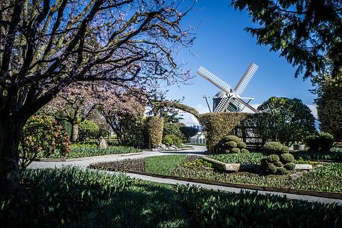 Roosengarde Gardens-006