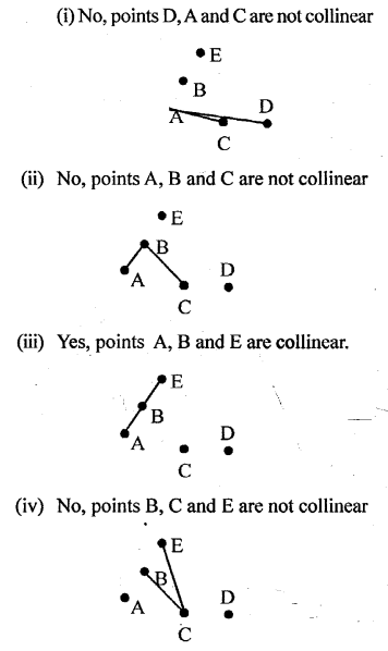 Selina Concise Mathematics Class 6 ICSE Solutions - Fundamental Concepts -a14s