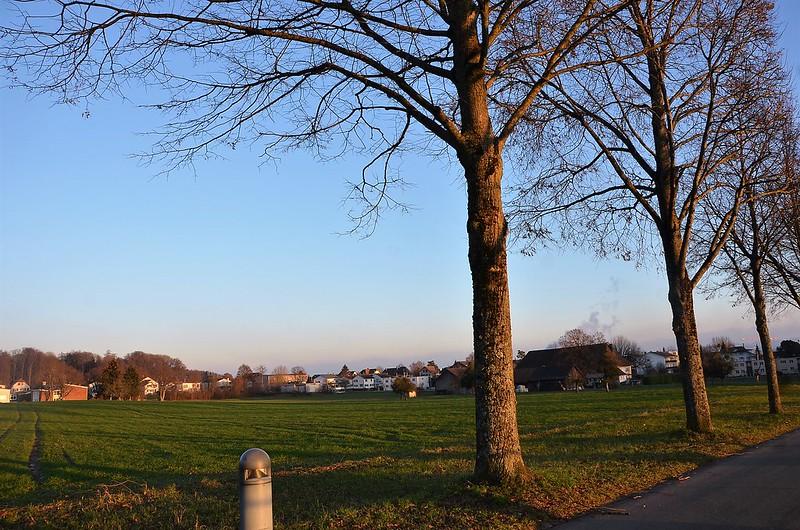 Feldbrunnen village 12.12 (10)