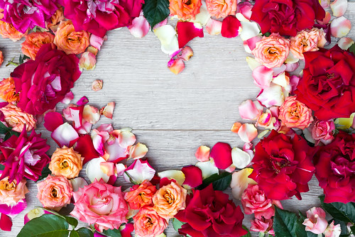 Frame heart made of rose flowers on wooden background for Valentines day. Flat lay, copy space
