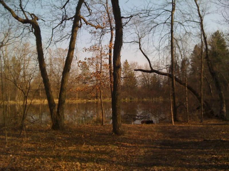 Thorn Creek