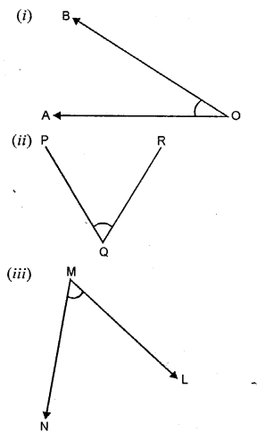Selina Concise Mathematics Class 6 ICSE Solutions - Angles (With their Types) -a1