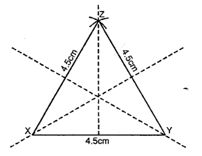 Selina Concise Mathematicsclass 6 ICSE Solutions - Revision Exercise Symmetry (Including Constructions on Symmetry)-4