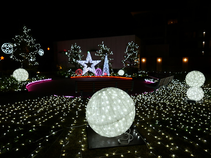 Winter Lights Garden at Ekiue Hiroba