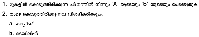 Plus Two Zoology Model Question Papers Paper 1.26