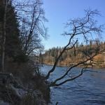 2018_12_12_7_Brücken_Aaretal_Kiesental (117)