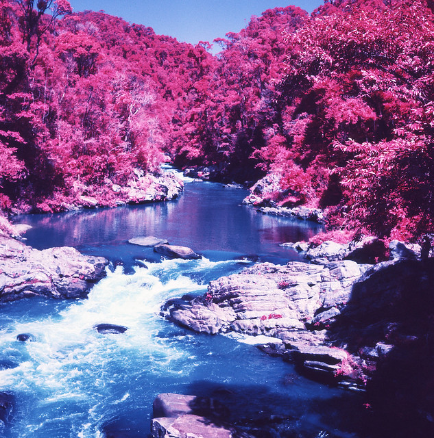 Red Riverbank